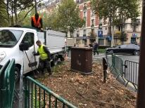 Dispositif anti-rats : Neuilly passe à laction